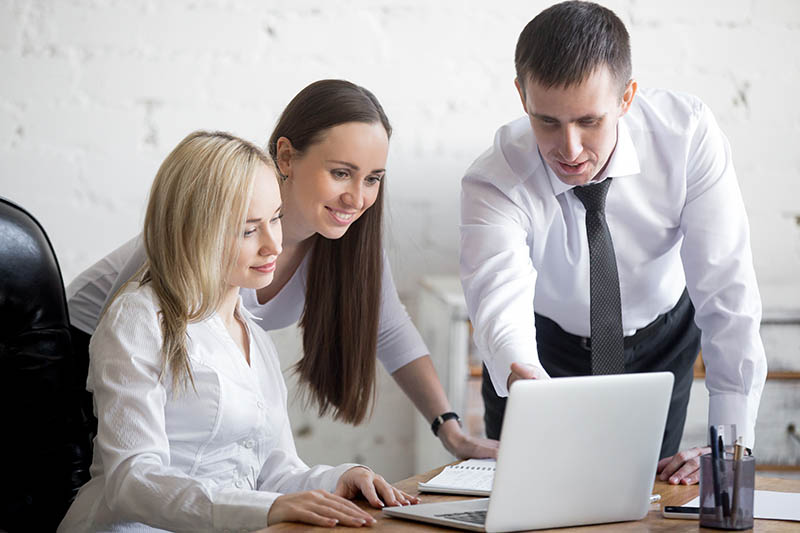 Business team working on project